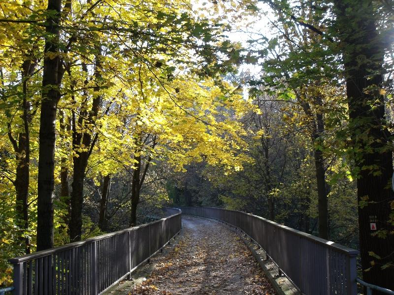 Weg über die Streichholzbrücke