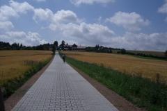Radweg nach Neuklingenberg