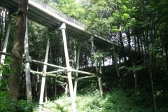 Streichholzbrueke-in-Klingenberg