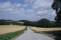 Wanderweg-von-der-Neuklingenberger-Hoehe