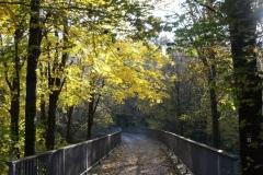 Wanderweg Streichholzbrücke von Klingenberg